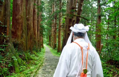 Yamabushi train on the stone stairway amongst the cedars on Mt. Haguro of the Dewa Sanzan