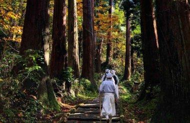 Yamabushi training on Mt. Haguro during autumn